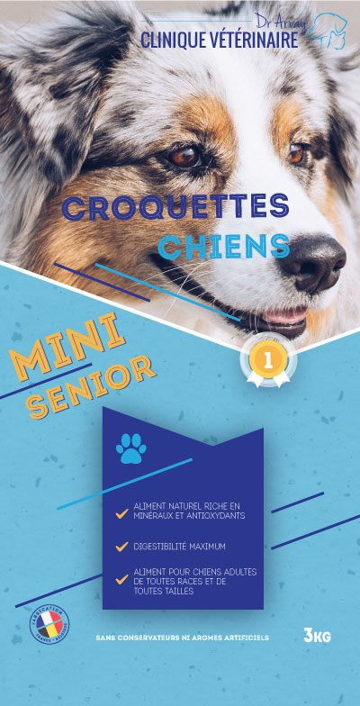 3KG-chiens-Mini-Senior